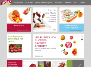 Producteur de fruits à Lyon