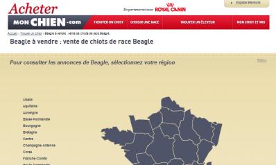AcheterMonChien.com : toutes les annonces de chiots à vendre en France