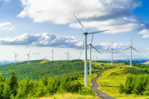 Champ d'éolienne avec herbe verte et ciel bleu en fond