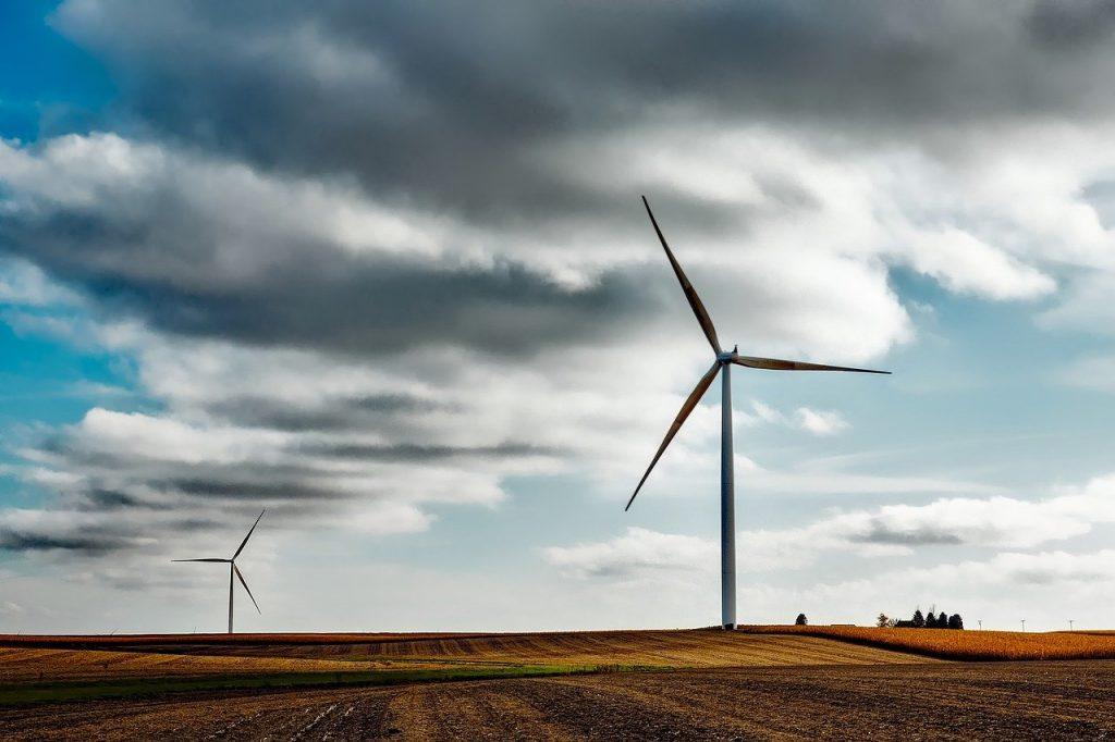 éoliennes dans un champ